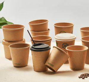 Biodegradable Plastic-Free 8oz 12oz 16oz Café vaso de papel