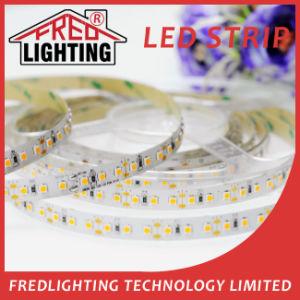 Protección IP68 de 12VCC/LED de 120m de TIRA DE LEDS