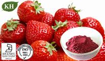 Naturel Extrait de fraises polyphénols, de 2 % 5 %, 10 %, 20 %, 40 %