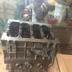 Blocco cilindri del motore di Yanmar 4tnvg4