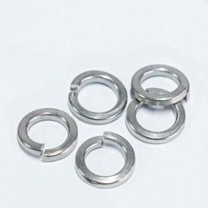 Go 304 Stainless-Steel rondelle à ressort