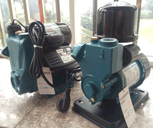Wedo 1awzb125 Auto Selbst-Priming Peripheral Hydraulic Water Pump Domestic Use