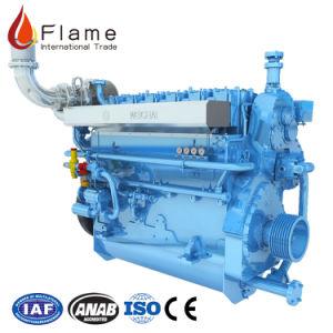 Il canottaggio fornisce il motore diesel marino