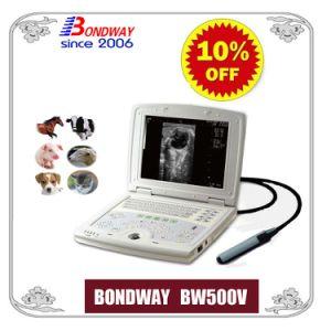 Equipo veterinario, el medicamento veterinario, veterinario de la máquina de ultrasonidos portátil de captura de ultrasonidos, la máquina, el escáner de ultrasonidos ultrasonidos, la reproducción