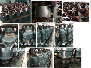 Pompe ad acqua sommergibili elettriche di Qdx10-10-0.55f Dayuan 220V/380V, 0.55kw