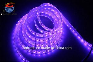 12V/24V SMD 5050 TIRA DE LEDS con CE. Para la decoración RoHS