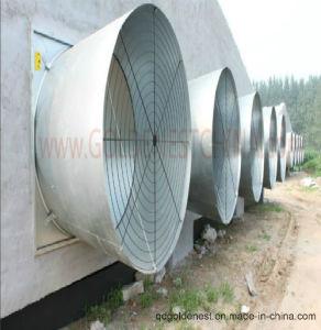 Ventilador de refrigeración para la ventilación de la casa de aves de corral (JCJX-62)