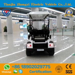 Zhongyi 6 Lugares clássico alimentado por bateria fora da estrada do Aeroporto Electric passeios para carros de golfe por grosso