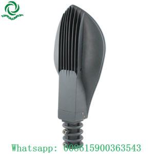 一義的な葉デザイン50W 80W 100W 120W 150W LED街灯