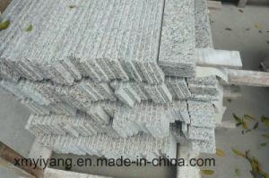 Countertop van de Keuken van het Graniet van de Huid van de tijger Witte voor Badkamers/Vantity