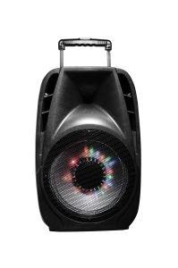 karaoke stéréo extérieur professionnel FM/USB de 12 '' Bluetooth PRO