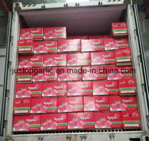 중국에서 신선한 빨간 FUJI Apple
