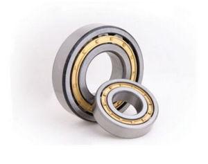 Faible bruit de roulement à rouleaux cylindriques Hot-Sale Nup2207