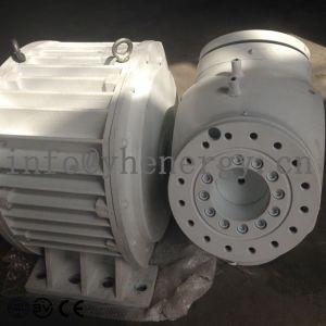 China 12V/24V/48V/96V Elevadores eléctricos de turbina eólica Gerador do Alternador
