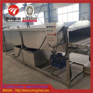 高圧スプレーのショウガの洗剤の洗濯機