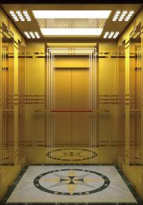 Ende-Passagier-Höhenruder des Spiegel-800kg mit Edelstahl-Tür