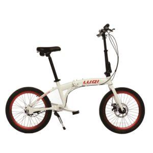 Happy Rider- 16/20 polegada bicicleta dobrável com o eixo mergulhar e Shimano Derailleur