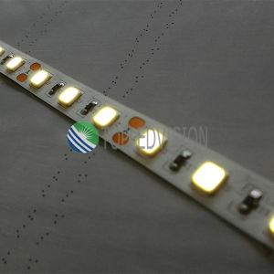 Boa luz de tira flexível 30LEDs/M do diodo emissor de luz da qualidade SMD5054