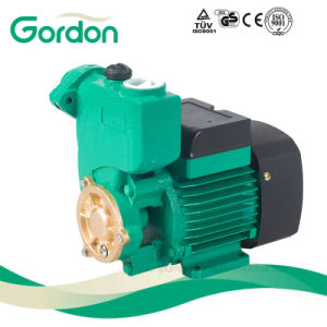 庭の銅線の圧力センサーが付いている自動プライミング自動水ポンプ