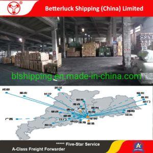 Les taux de fret maritime à Shenzhen à Karachi au Pakistan de la logistique de l'agent d'expédition