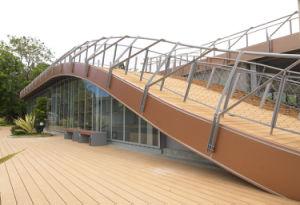 O composto de plástico Madeira Ocox Flooring (HO02515)
