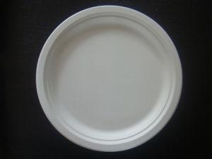Plaque de gâteau 100% biodégradable (YP-07)