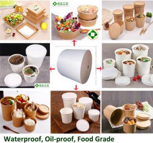 Pha y recubierto de papel 100% biodegradables para la Copa de helados, tazón de sopa, ensalada Cup