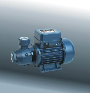Rand Pump, Electric Pump met Ce en UL (DKF1)