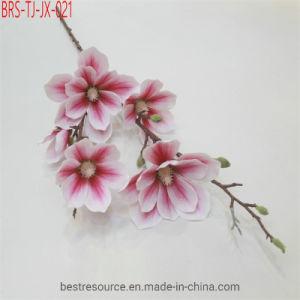 Quase Pure White natural e artificial Rosa Magnolia flores para decoração