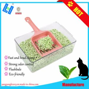 Disco duro de productos pet racimos el té verde El Tofu cat litter