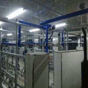 Compteur automatique de verre de lait en arête de poisson traire le système de salon 40 sièges