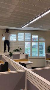Nach Maß Bogen-hölzerner Fenster-Plantage-Blendenverschluß mit genau Abmessungen