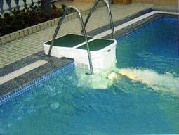 Fabrik-Preis-Wand hing Swimmingpool Pipeless Filter