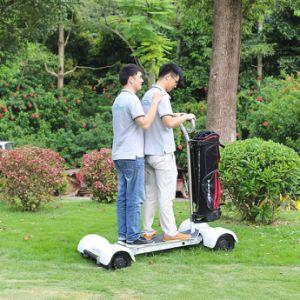 Carrelli di golf utilizzati distanza in miglia massima con errori elettrica di Ecorider 1000W 60V 20.8ah Golfboard