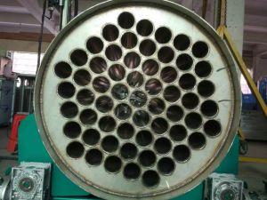 De mariene Generator 2000g Ozoneizer van het Ozon van de Behandeling van het Water van het Park