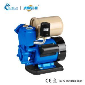 Anshi 0.5HP Zusatzwasser-Pumpe mit thermischem Schoner (GP130)
