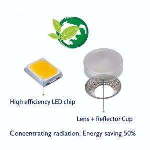 AC110-240V crecer la barra de luz LED para interiores, el sistema hidropónico crecer
