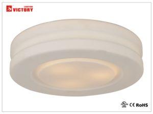 居間のための現代円形LEDの屋内天井灯