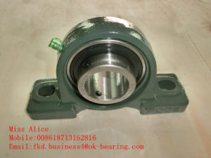 Inserte el rodamiento de acero cromado (UCHA)