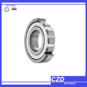 Rodamientos de rodillos cilíndricos de alta calidad Nu1005