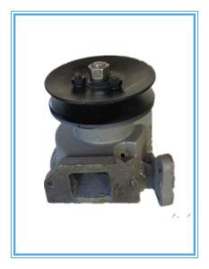 Schwerer Förderwagen-Ersatzteile Maz Wasser-Pumpe 236