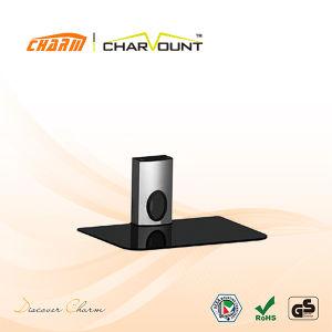 O OEM decodificador de DVD de montagem da TV no suporte de parede (CT-DVD-25B)