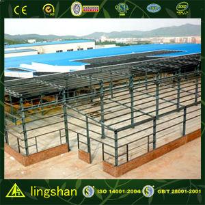 Светлое здание мастерской стальной рамки (LS-S-058)