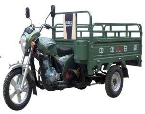 Met drie wielen (od150zh-B)
