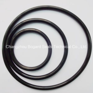 Black HNBR O-Ring for Sealing