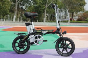 Plegable Wblddc (1612-B) Batería de litio e-bici Ebike Bicicleta eléctrica