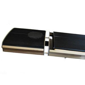 Design elegante de alta qualidade Aquecedor Eléctrico de Pátio de infravermelhos com rádio Bluetooth