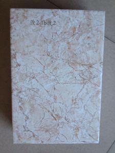 tegel van de Muur van het Toilet van 250X400mm de Ceramische 3D Inkjet Binnenlandse