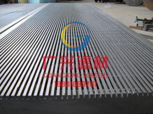 Edelstahl-Keil-Draht-Bildschirm-Panel