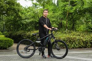 Bicicletta Elettrica Mountain Bike all'ingrosso contras Motore Unidad media